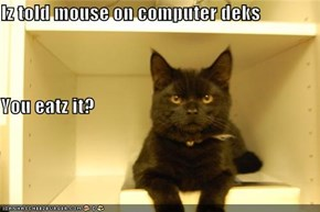 Iz told mouse on computer deks You eatz it?