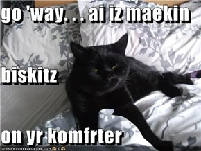 go 'way. . . ai iz maekin biskitz on yr komfrter
