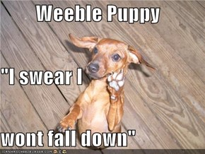 "Weeble Puppy ""I swear I wont fall down"""