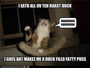 Cats love old jokes