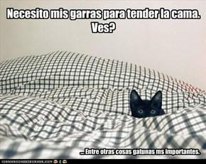 Necesito mis garras para tender la cama.  Ves?