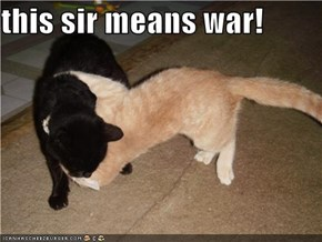 this sir means war!