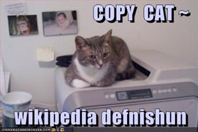 COPY  CAT ~  wikipedia defnishun