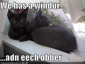 We has a windur  ...adn eech obber