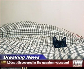 Breaking News - LOLcat discovered in the quantum vaccuum!