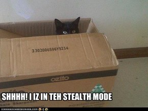 Stealth Mode: Engage!