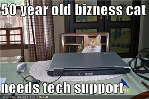 50 year old bizness cat  needs tech support