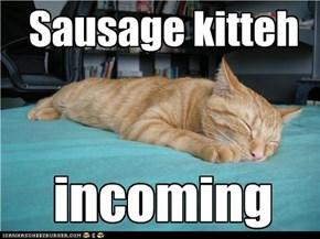 Sausage kitteh