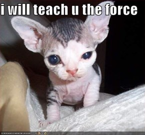 i will teach u the force