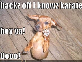 backz off i knowz karate hoy ya! Oooo!