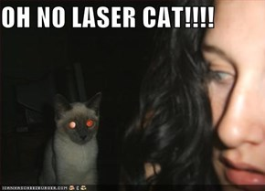 OH NO LASER CAT!!!!