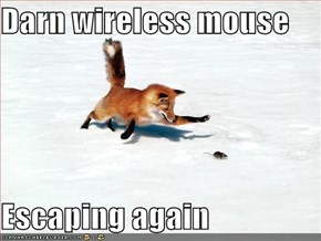 Darn wireless mouse  Escaping again