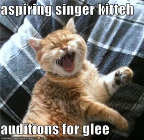 aspiring singer kitteh  auditions for glee