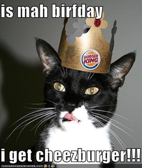 is mah birfday  i get cheezburger!!!