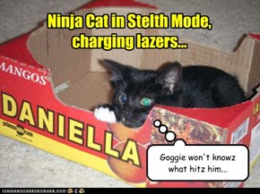 Ninja Cat in Stelth Mode,  charging lazers...