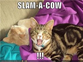 SLAM-A-COW  !!!