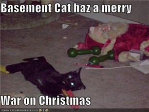 Basement Cat haz a merry  War on Christmas