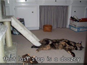 that last step is a doozey