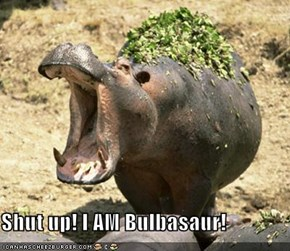 Shut up! I AM Bulbasaur!