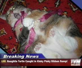 Breaking News - Naughtie Tortie Caught in Kinky Pinky Ribbon Romp!