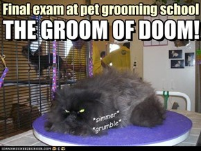 Final exam at pet grooming school... the Groom of Doom!!