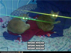 Intruder detected. Intruder detected. Intruder detected.