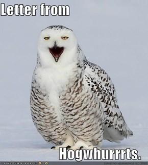 Letter from  Hogwhurrrts.
