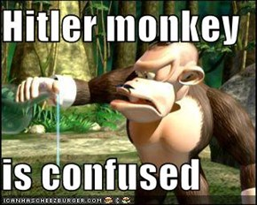 Hitler monkey  is confused