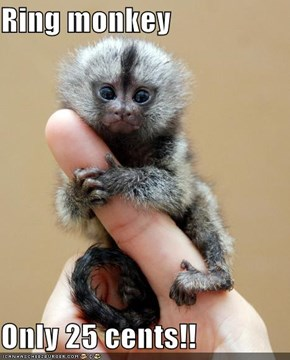 Ring monkey  Only 25 cents!!