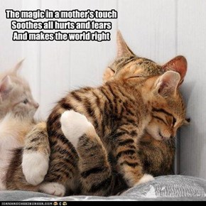 The magic in a mother's touch Soothes all hurts and fears And makes the world right