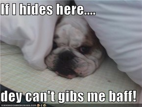 If I hides here....  dey can't gibs me baff!