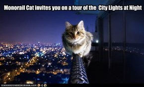 Monorail Cat invites you on a tour of the  City Lights at Night