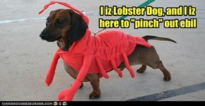 "I iz Lobster Dog, and I iz here to ""pinch"" out ebil"