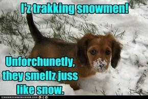 I'z trakking snowmen!