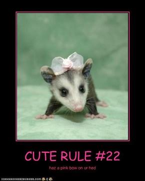 CUTE RULE #22