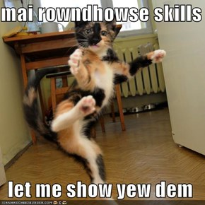 mai rowndhowse skills  let me show yew dem