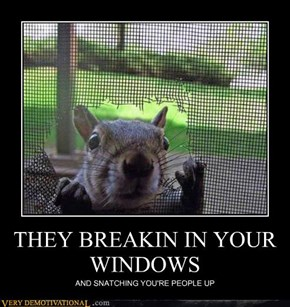 THEY BREAKIN IN YOUR WINDOWS