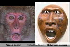 Random monkey Totally Looks Like Native american mask
