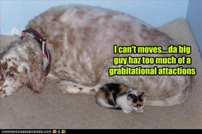I can't moves....da big guy haz too much of a grabitational attactions