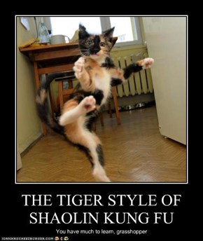 THE TIGER STYLE OF SHAOLIN KUNG FU