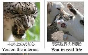 Internets != IRL