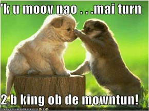 'k u moov nao . . .mai turn  2 b king ob de mowntun!