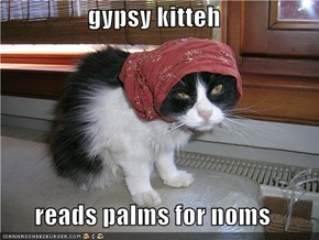 gypsy kitteh  reads palms for noms