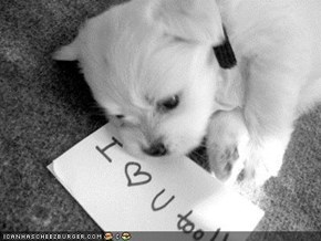 Cyoot Puppeh ob teh Day: I <3 U too!!