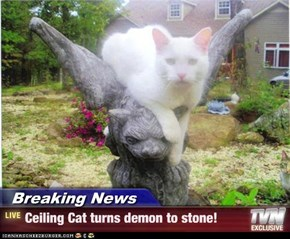 Breaking News - Ceiling Cat turns demon to stone!