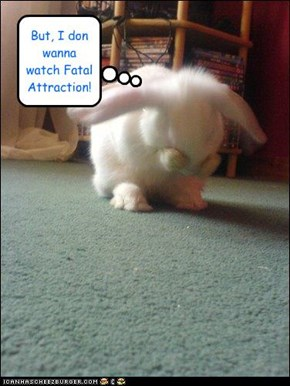 Poor sad bunny...