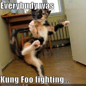 Everybudy was  Kung Foo fighting...