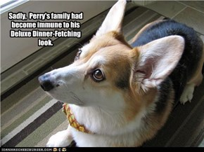 Sadly,  Perry's family had become immune to his Deluxe Dinner-Fetching look.