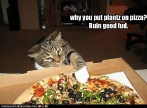 why you put plantz on pizza? Ruin good fud.