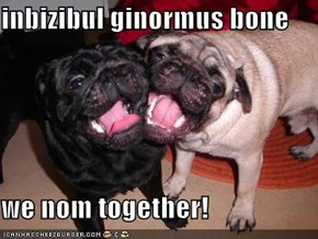 inbizibul ginormus bone  we nom together!
